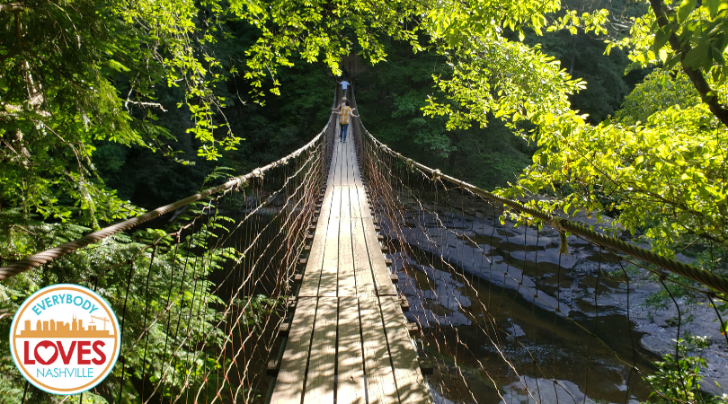 Rope Bridge over Cane Creek in Fall Creek Falls State Park